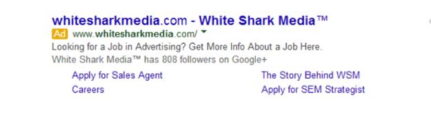 Proper Ad Extension in Google AdWords - White Shark  Media Blog