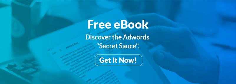 Free Adwords Book